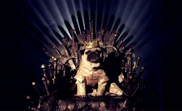 Pugs Game of Thrones (6)