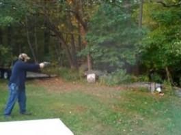Shoot a Tree