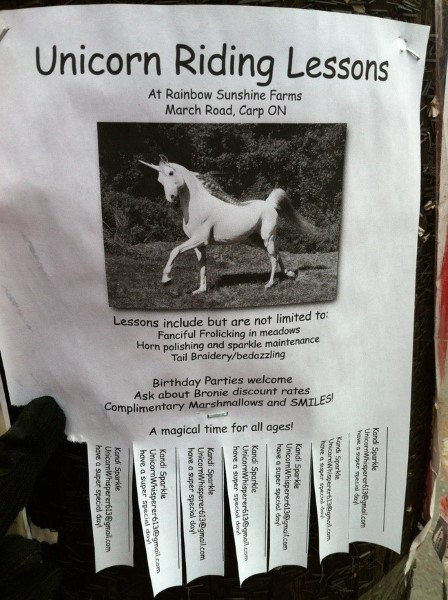 Comedy Geniuses Put Up Hysterical Flyers And Make Everyone