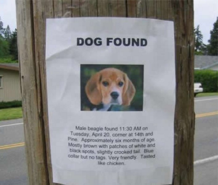 Comedy GENIUSES Put Up Hysterical Flyers And Make Everyones Day – Found Dog Poster Template