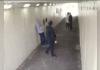 boxer gets revenge