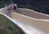 water slide thumb