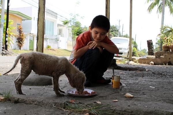 Ken Feeding White Puppy