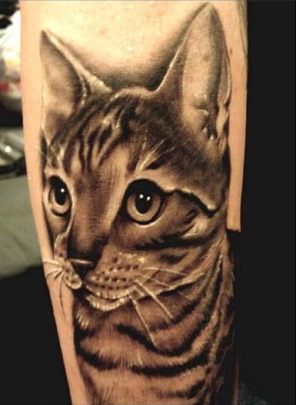 cat-tattoo