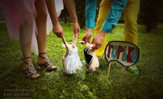 Tiny Bride and Groom