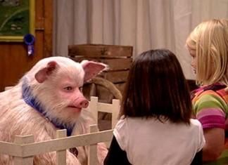Talking Pig Prank Jimmy Kimmel