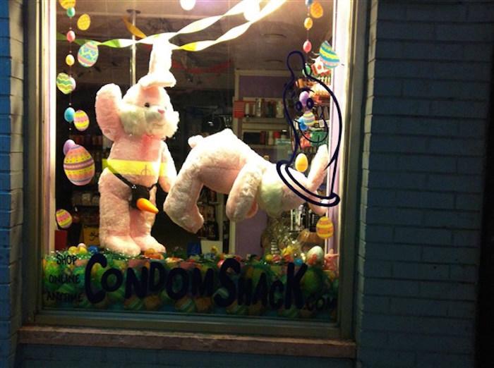 bunny 15
