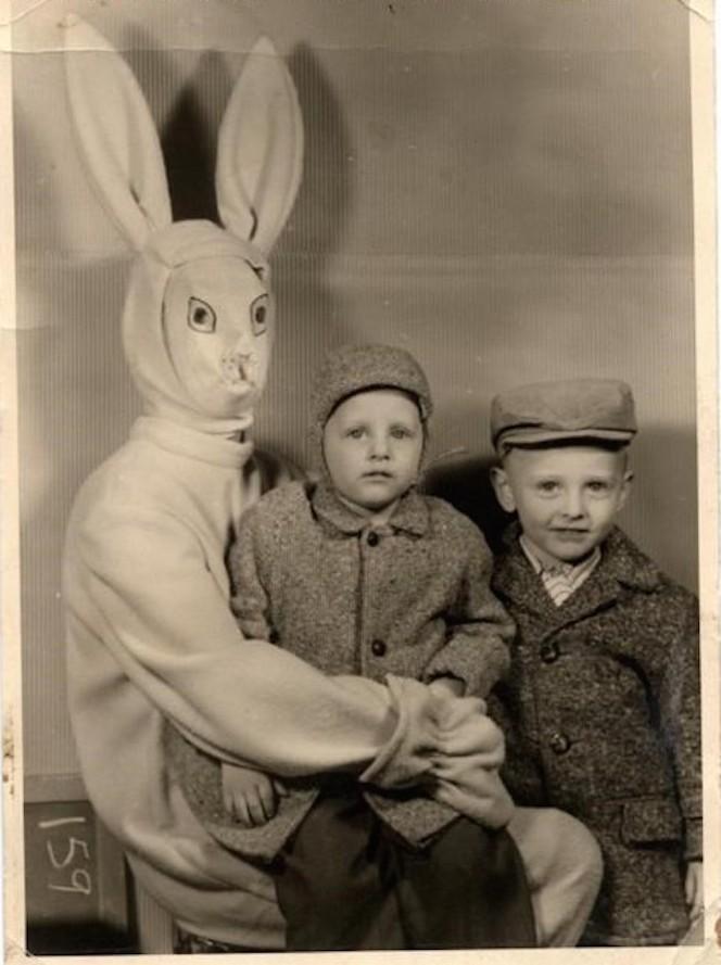 bunny 20