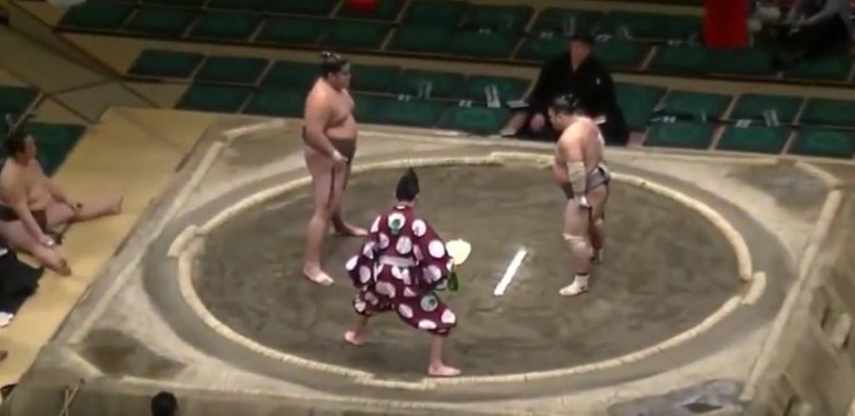 Sumo Wrestling KO