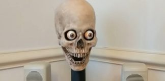 amazon echo skull
